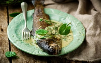 Broiled Rainbow Trout With Lemon and Parsley Butter Sauce