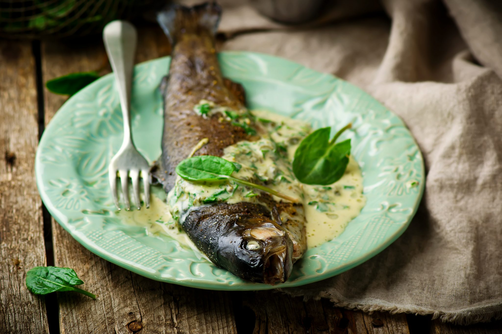 Broiled Rainbow Trout With Lemon Parsley Brown Butter Sauce.